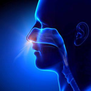 examen fonction respiratoire avant rhinoplastie